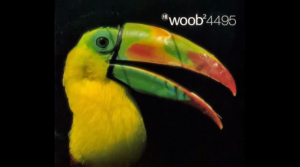 Listen to Hear :: Woob @ Das Baumhaus Berlin | Berlin | Berlin | Germany