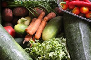 Fresh From The Farm, Help Prepare & Eat This Food
