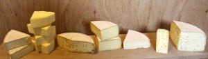 «Von der Milch zum Käse» – Selber Käse machen (Workshop)